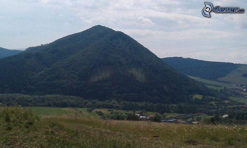kullar