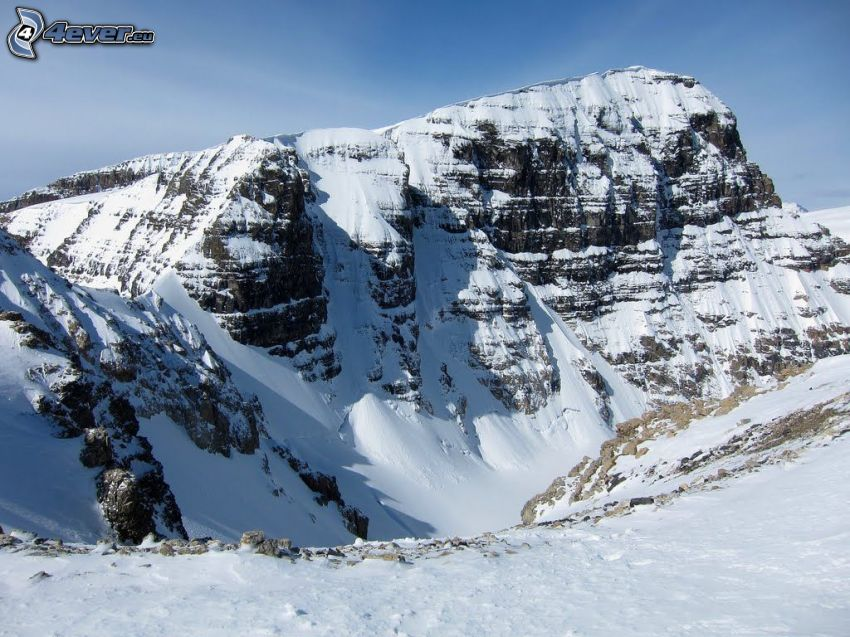 Mount Athabasca, snöig backe