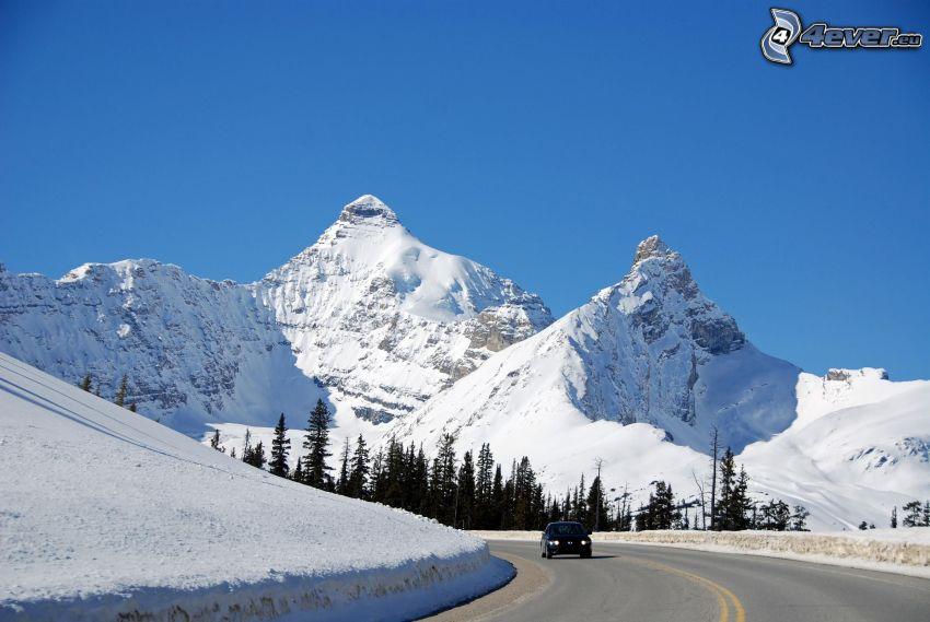Mount Athabasca, snöklädda berg, väg