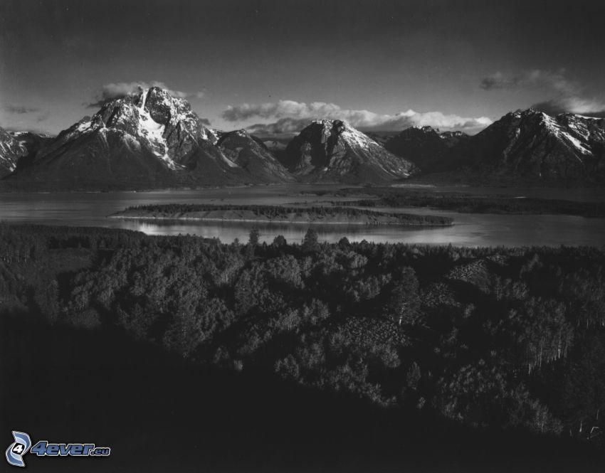 Mount Moran, Wyoming, sjö, skog, svartvitt foto