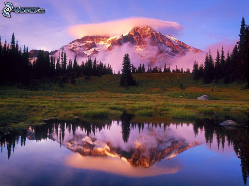 Mount Rainier, Washington, USA, snöiga berg ovanför sjö, snöklätt berg i molnen, skog, äng, tjärn, spegling