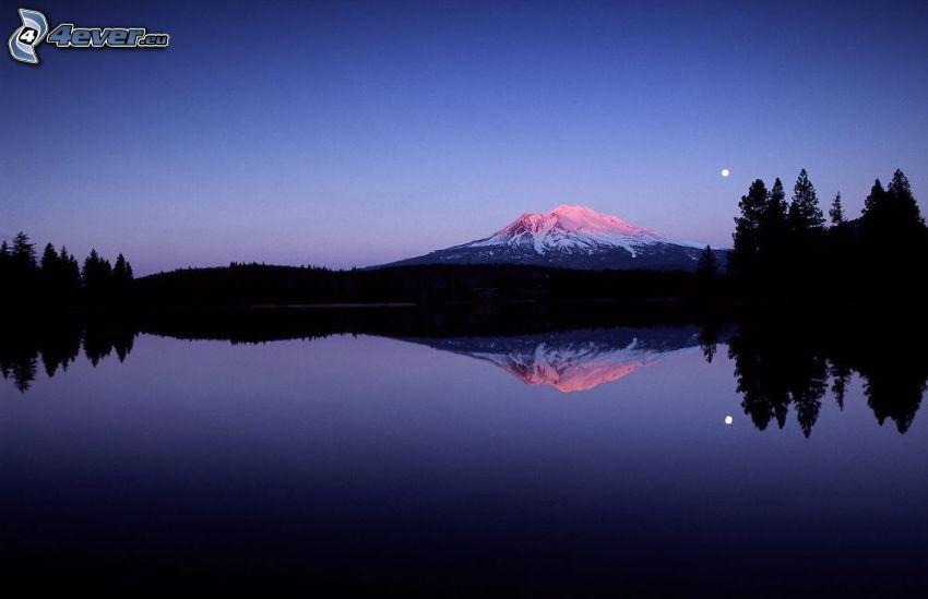 Mount Shasta, snöigt berg, tjärn, spegling, kväll