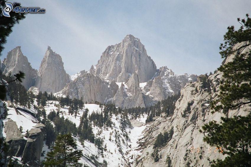 Mount Whitney, klippiga berg, snöig skog