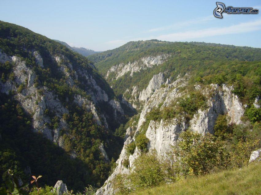 natur, klippor