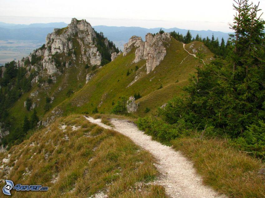 Ostrá, Stora Fatrabergen, Slovakien, vandringsled, klippiga berg