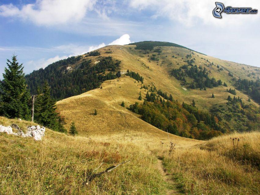 Rakytov, Stora Fatrabergen, Slovakien, vandringsled