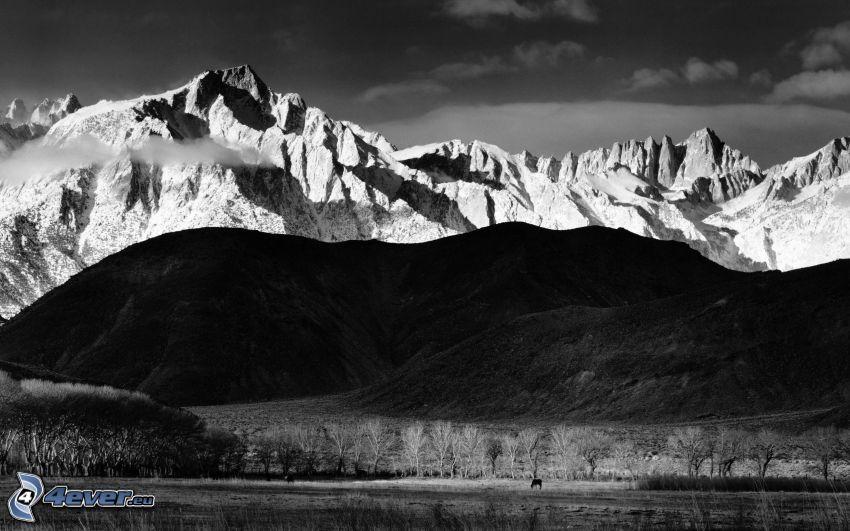 snöig bergskedja, kullar, svartvitt foto