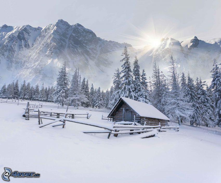 snöig stuga, snöklädda träd, snöklädda berg, sol