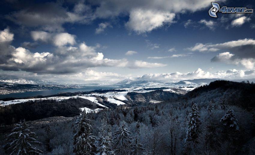 snöklädda berg, barrträd, moln, utsikt över landskap