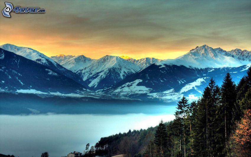 snöklädda berg, inversion, skog, himmel