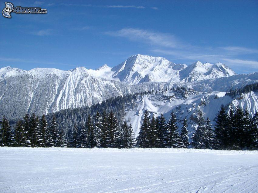 snöklädda berg, snöigt landskap