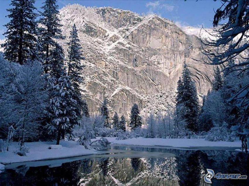 snötäckt landskap, snötäckt barrskog, sjö i skogen, snöigt berg