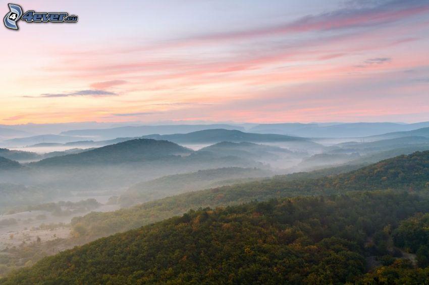 utsikt över landskap, kullar, skog, soluppgång, markdimma
