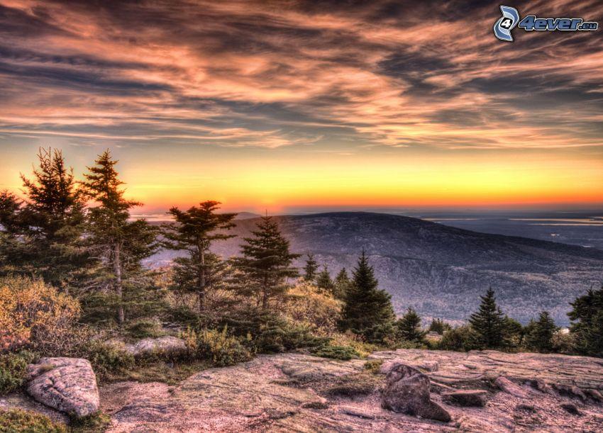 utsikt över landskap, soluppgång, klippa, kulle, barrträd