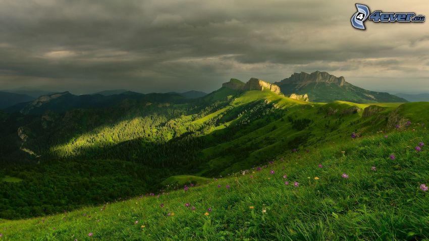 utsikt över landskap, steniga kullar, äng, lila blommor, gräs, moln
