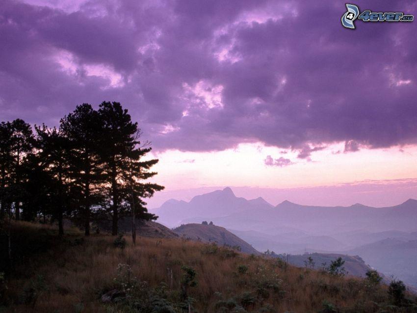bergskedja, träd, lila himmel