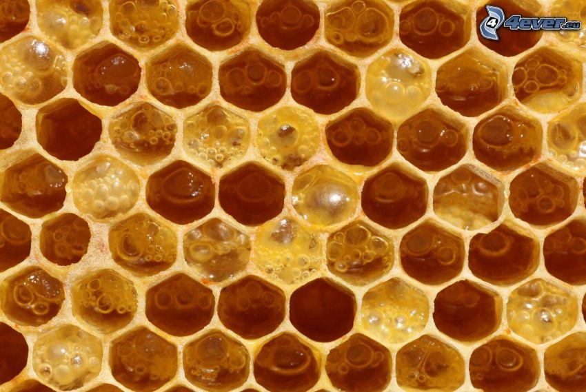 bivax, honung
