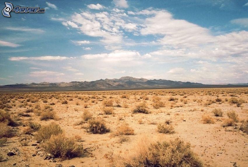 Death Valley, öken, bergskedja