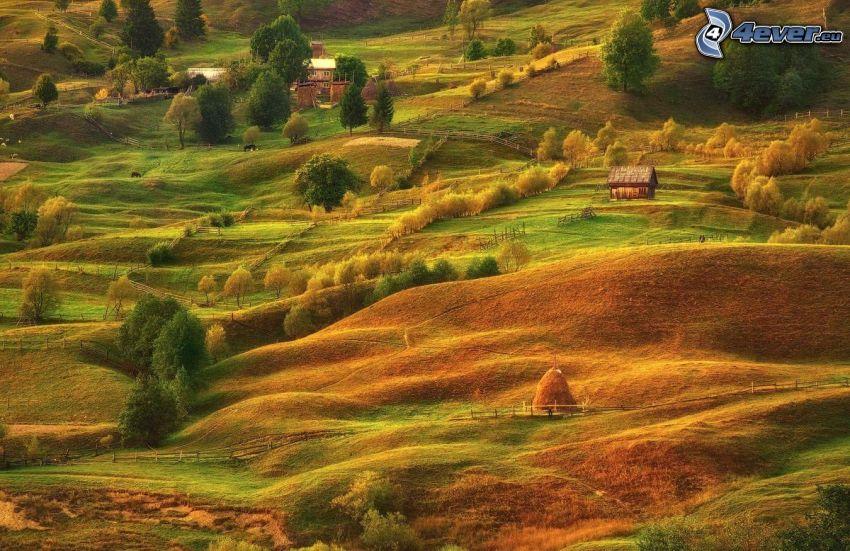 fält, hus, höstträd