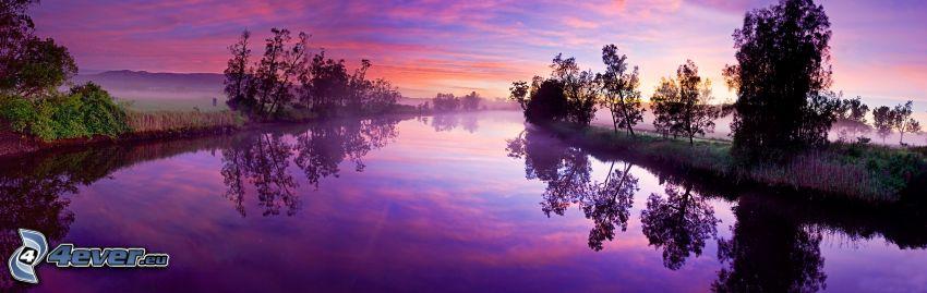 flod, träd, lila himmel