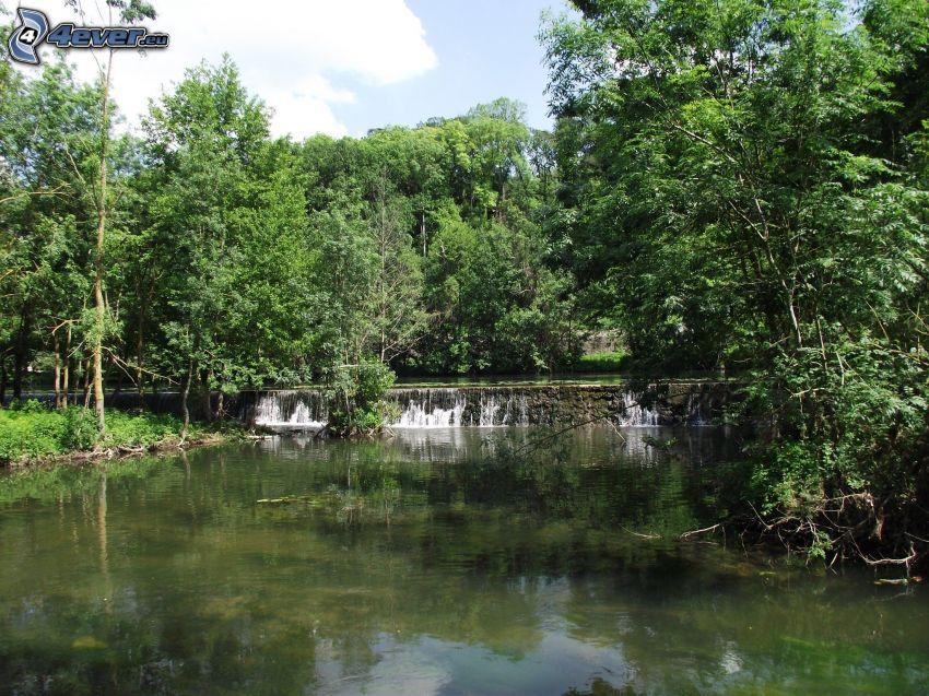 flod i skog, vattenfall