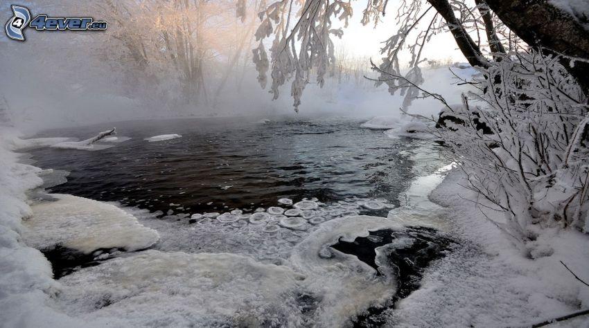 frusen sjö, snö, dimma