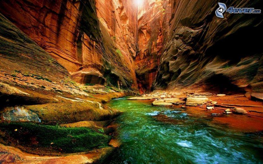 Grand Canyon, USA, klippor, bäck, mossa