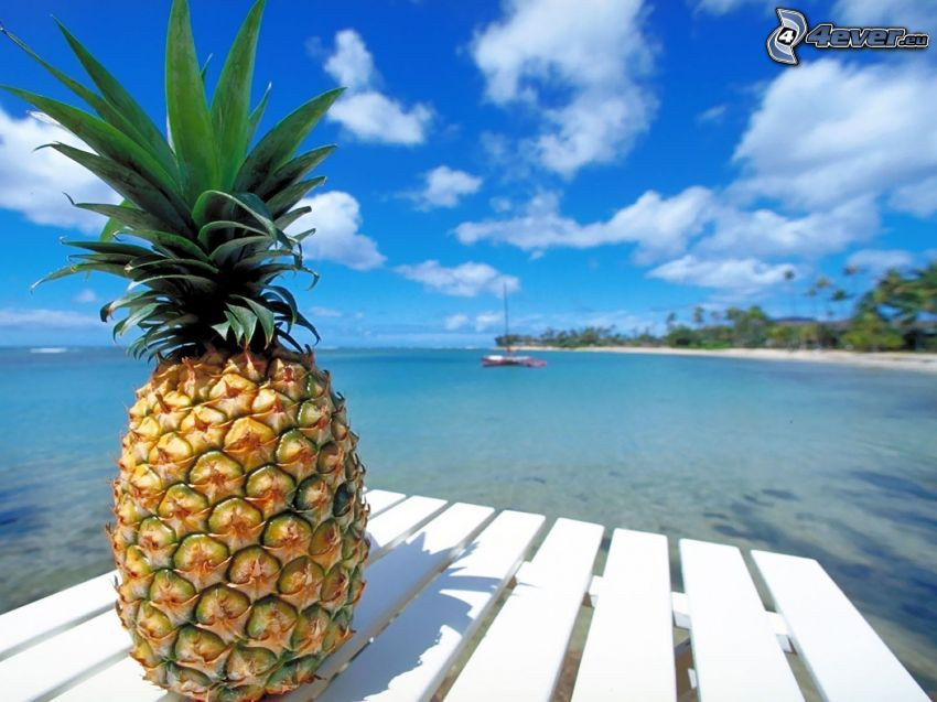 ananas, hav