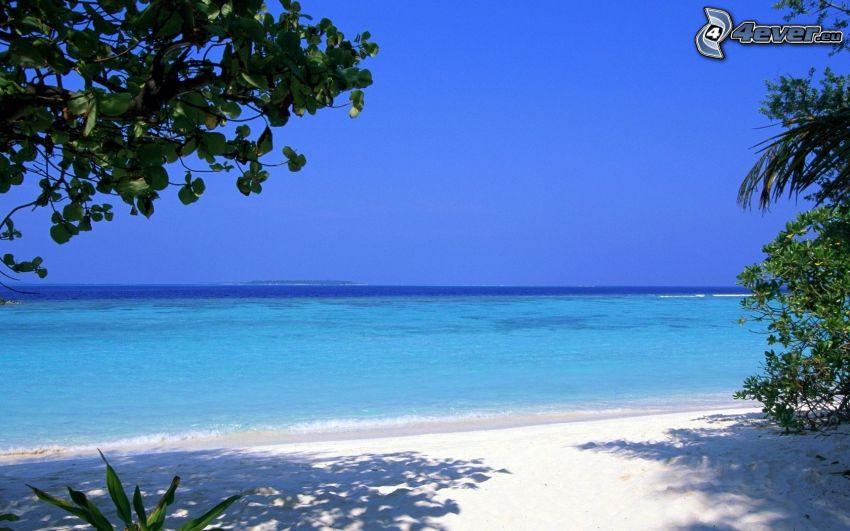 azurblå sommarhav, strand