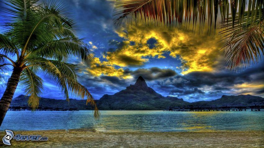 Bora Bora, palmträd över hav, berg, moln, HDR