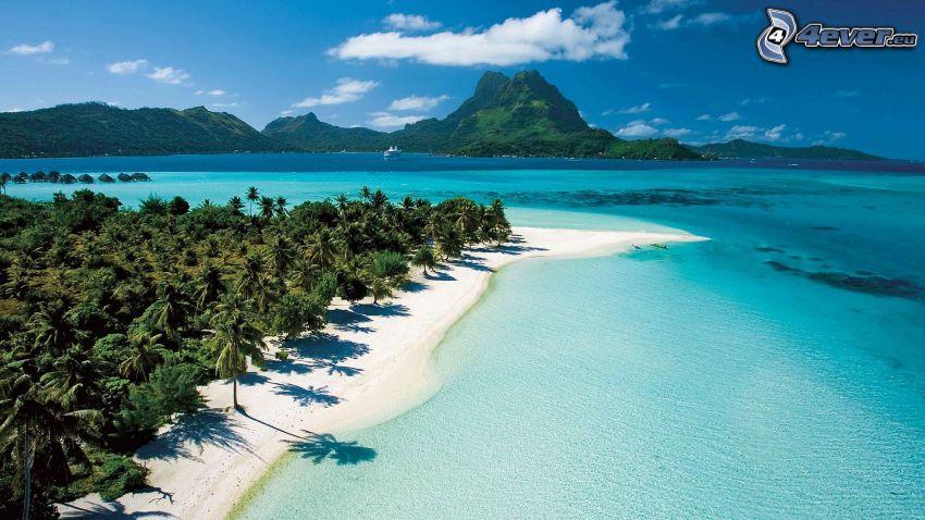 Bora Bora, tropiska öar, palmer, azurblå sommarhav