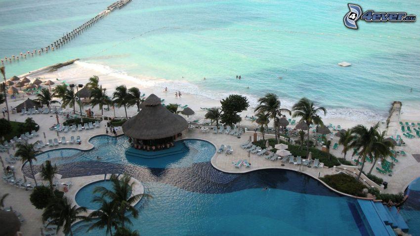 Cancún, strand, hav, palmer