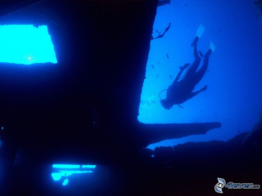 dykare vid vrak, hav