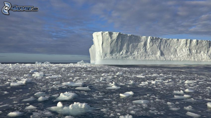 glaciär, isflak