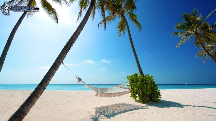 hängmatta, palmer, sandstrand, azurblå sommarhav