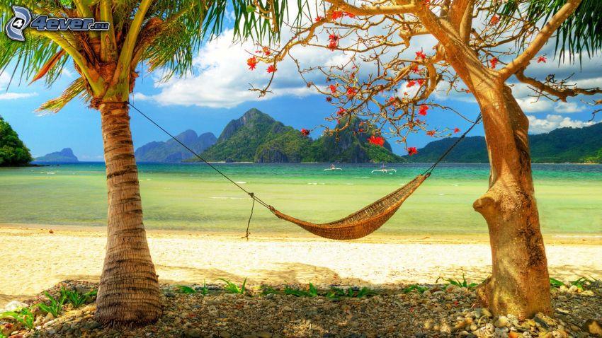 hängmatta, palmer på strand, hav, öar