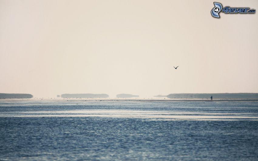 hav, kust