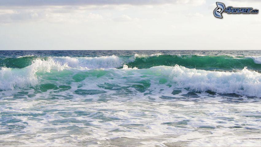 hav, vågor