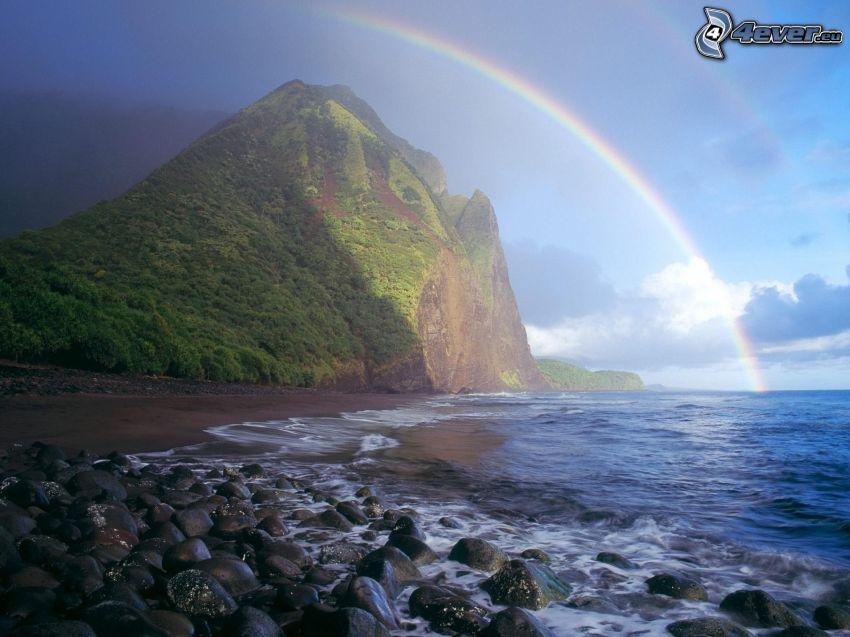 klippa, träd, regnbåge, stenar, hav