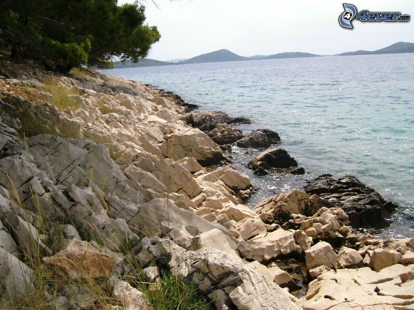 klippig kusten, hav