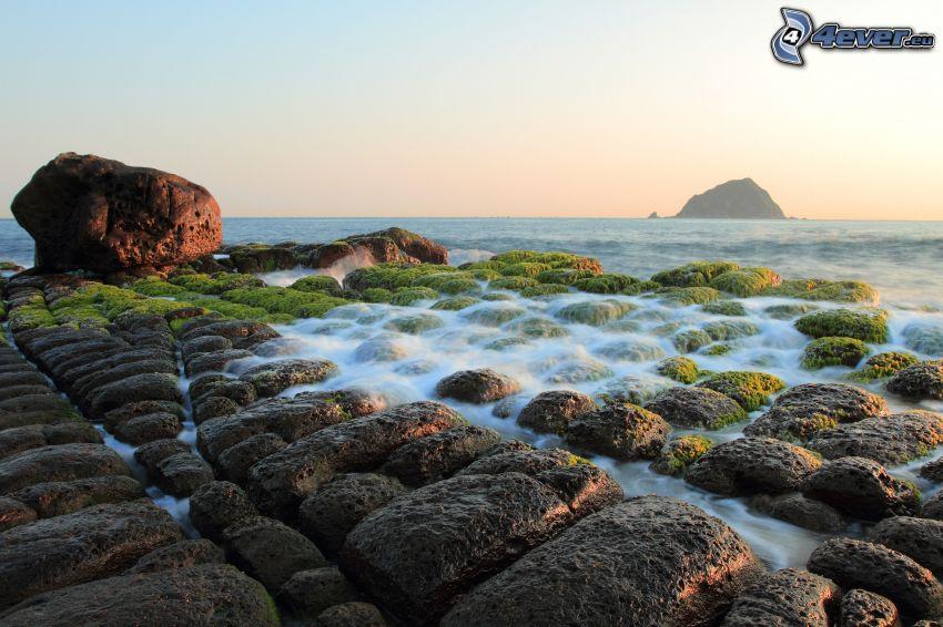 klippig kusten, stenbumlingar