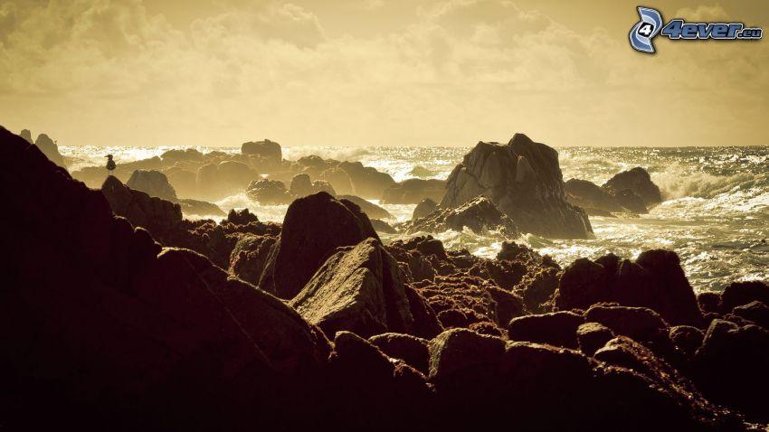 klippstrand, klippor, hav