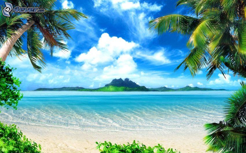 ö, hav, sandstrand, palmer, moln