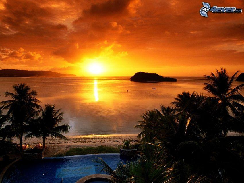 orange solnedgång över havet, palmer