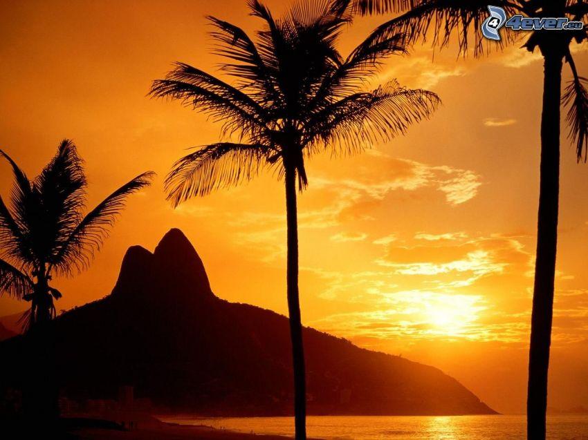 orange solnedgång över havet, palmer på strand, kullar