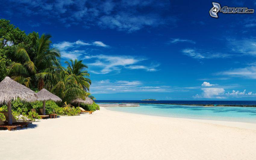 palmer på strand, azurblå sommarhav, parasoller på strand