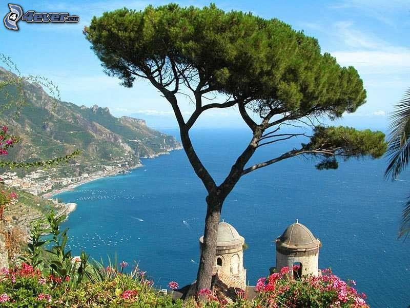 Salerno, Italien, ensamt träd, kust, hav, kapell