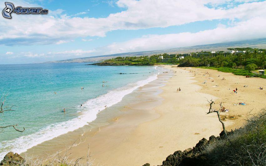 sandstrand, azurblå hav, Hawaii