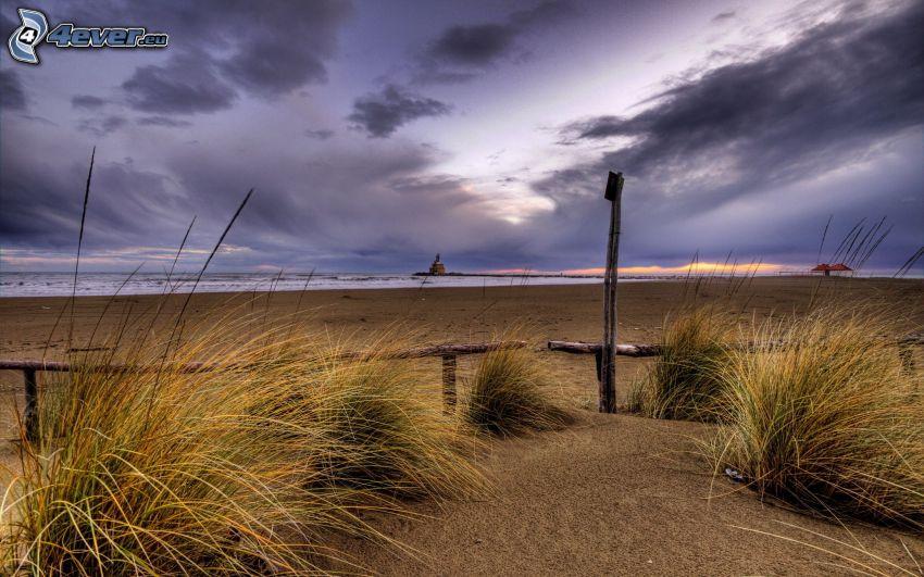 sandstrand, gräs, moln
