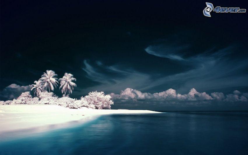 sandstrand, hav, natt